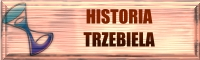 Historia Trzebiela